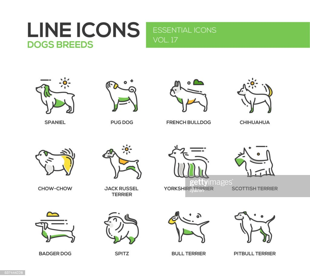 Dog breeds - line design icons set