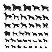 Dog Breeds, Silhouette Set