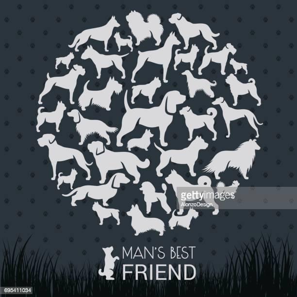 ilustraciones, imágenes clip art, dibujos animados e iconos de stock de razas de perros - galgo