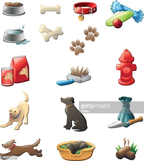 dog care shiny graphics - dog bowl stock illustrations, clip art, cartoons, & icons