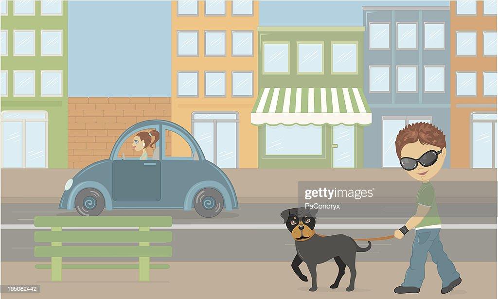 Dog city walk
