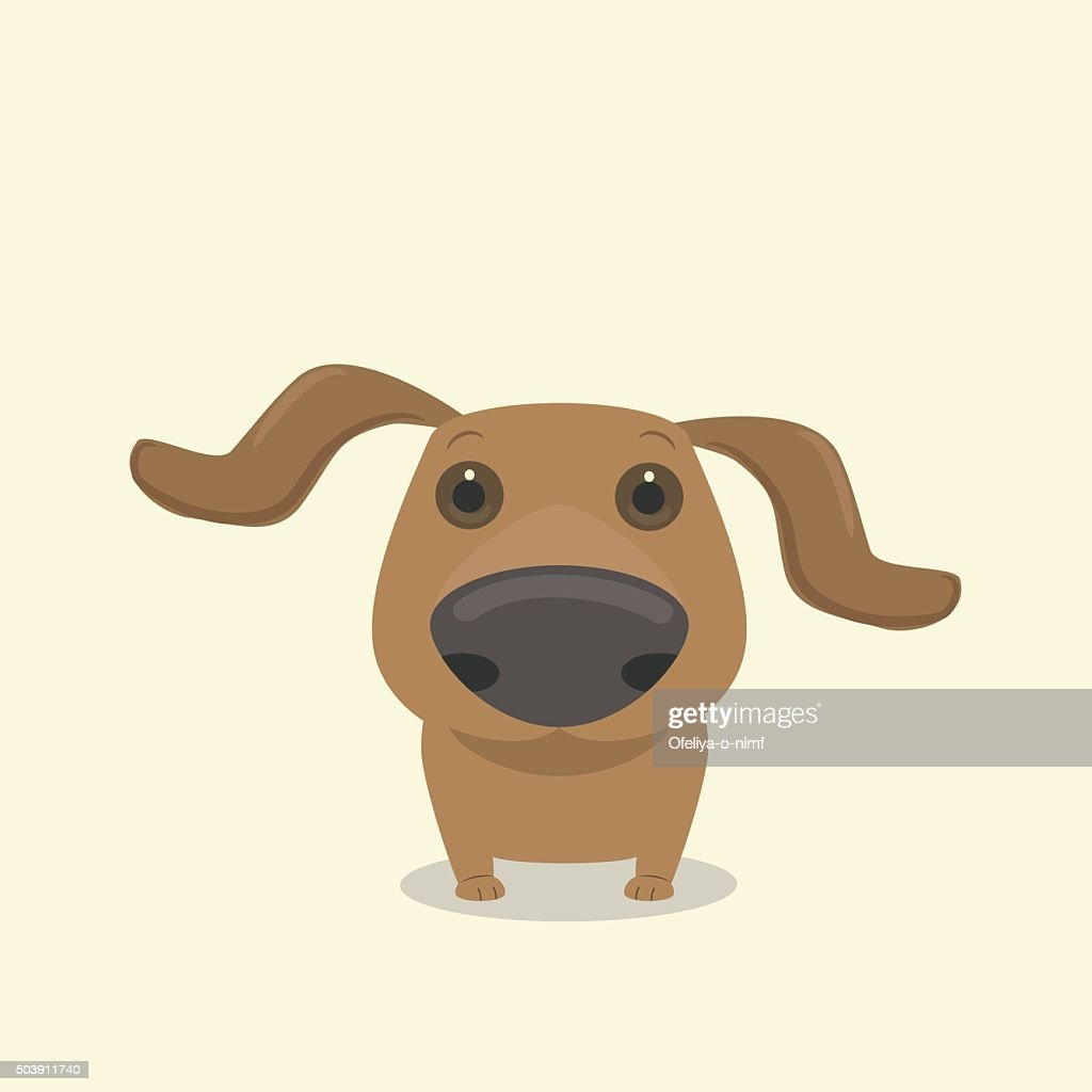 Dog dachshund's nose