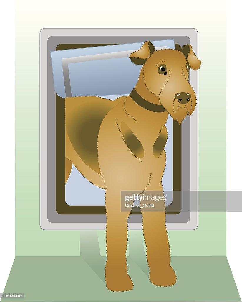 Dog Door C