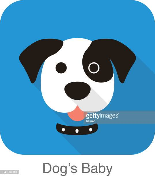 dog face, front view vector