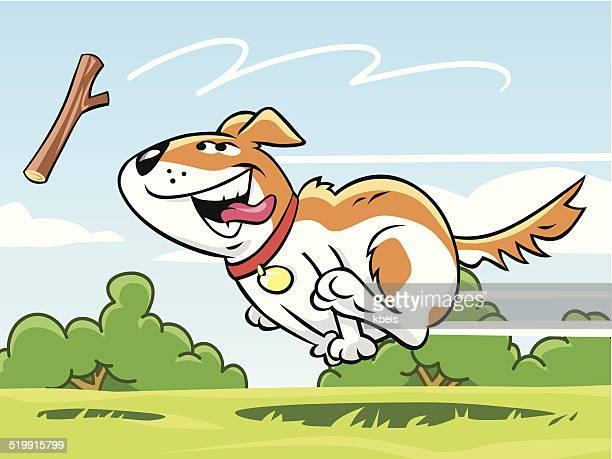dog fetching stick - stick plant part stock illustrations