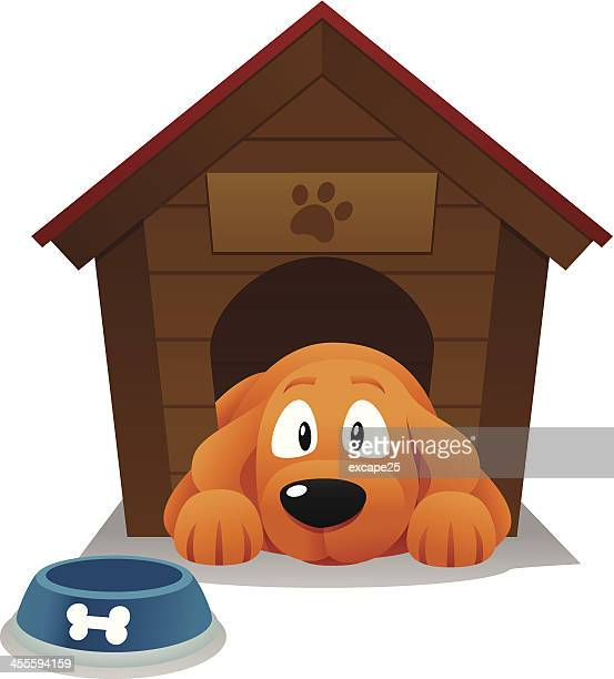 dog house - dog bowl stock illustrations, clip art, cartoons, & icons