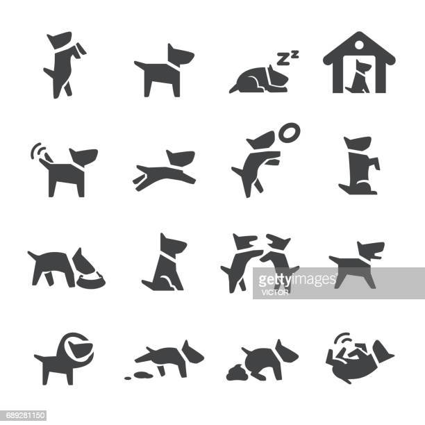 dog icons - acme series - pet equipment stock illustrations, clip art, cartoons, & icons