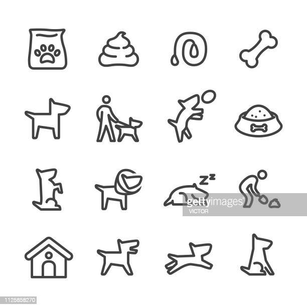 dog icons - line series - pet equipment stock illustrations, clip art, cartoons, & icons