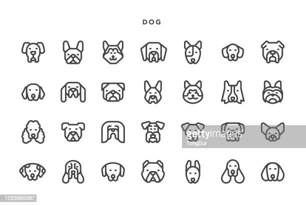 ilustraciones, imágenes clip art, dibujos animados e iconos de stock de iconos de perros - animal doméstico