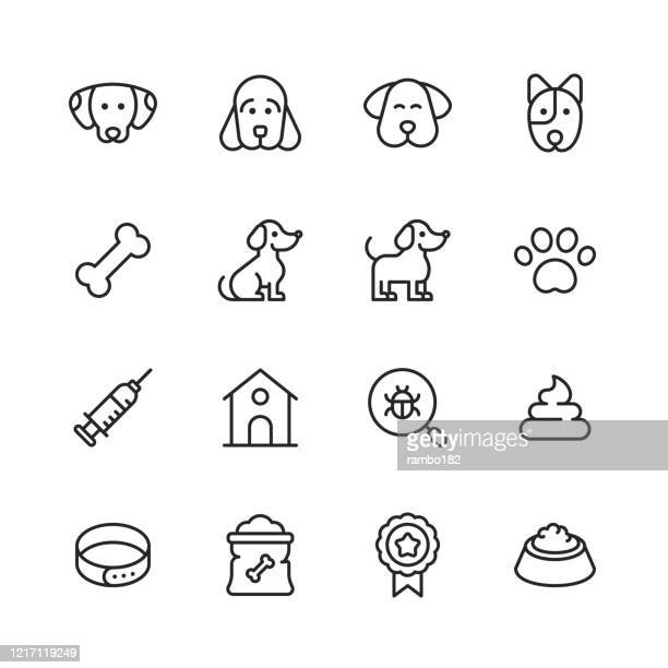 dog line icons. editable stroke. pixel perfect. for mobile and web. contains such icons as dog, puppy, kennel, domestic animal, dog bone, syringe, badge, dog paw, veterinarian, pet bowl, dog food. - dog bone stock illustrations