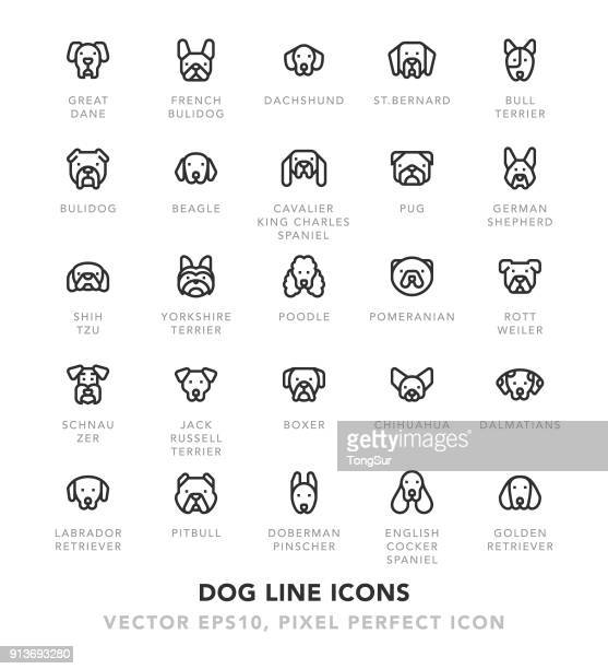 dog line icons - dog stock illustrations