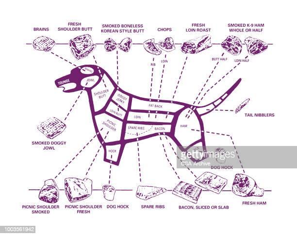 dog meat diagram - sirloin steak stock illustrations, clip art, cartoons, & icons