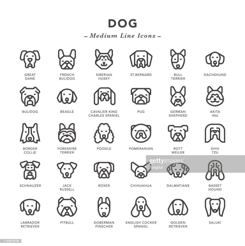 犬-中線のアイコン : ストックイラストレーション
