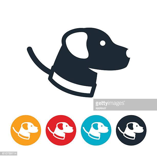 dog on leash icon - dog leash stock illustrations, clip art, cartoons, & icons