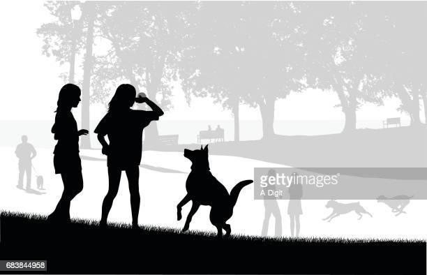 ilustraciones, imágenes clip art, dibujos animados e iconos de stock de juego de parques para perros - lanzar actividad física