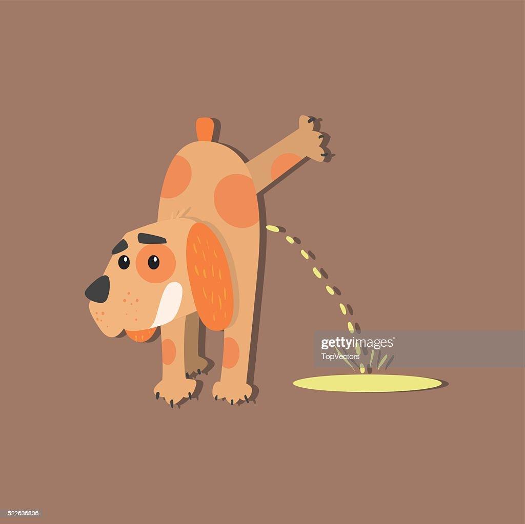 Dog Peeing Image