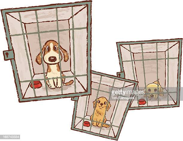 dog pound - cage stock illustrations, clip art, cartoons, & icons