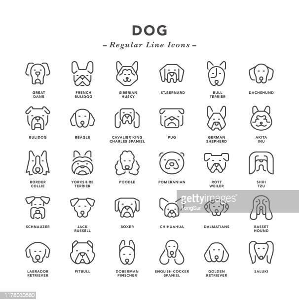 dog - regular line icons - purebred dog stock illustrations