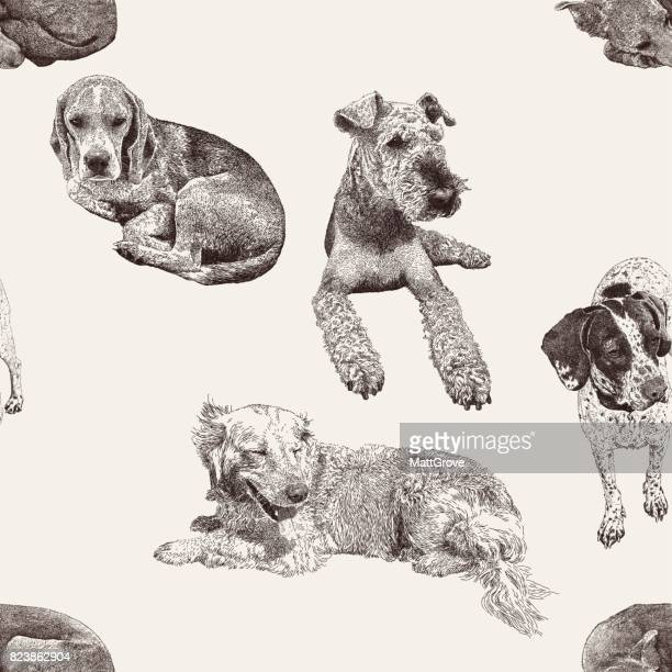 dog repeat - golden retriever stock illustrations, clip art, cartoons, & icons