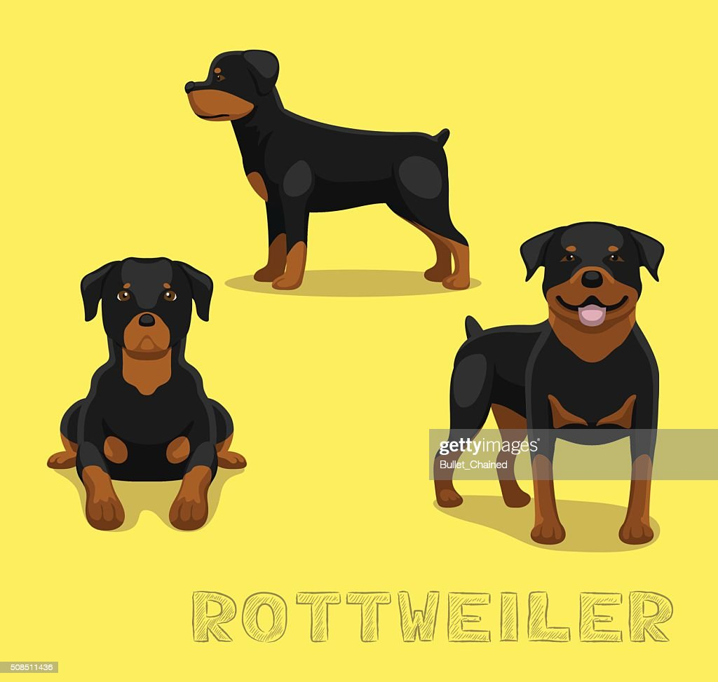 Dog Rottweiler Cartoon Vector Illustration
