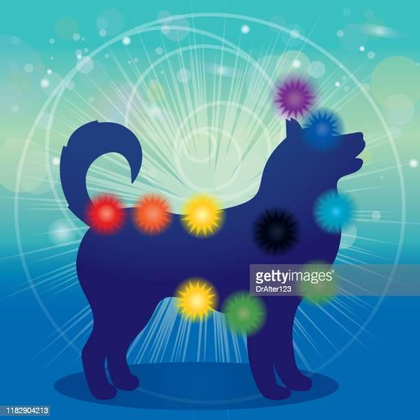 bildbanksillustrationer, clip art samt tecknat material och ikoner med hundsiluett och chakran - chakra