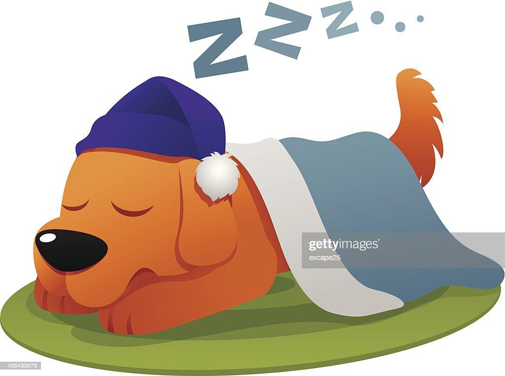 Dog sleep : stock illustration