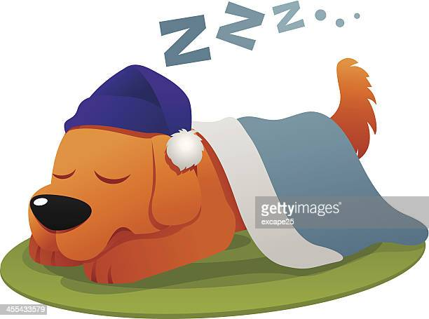 dog sleep - blanket stock illustrations, clip art, cartoons, & icons