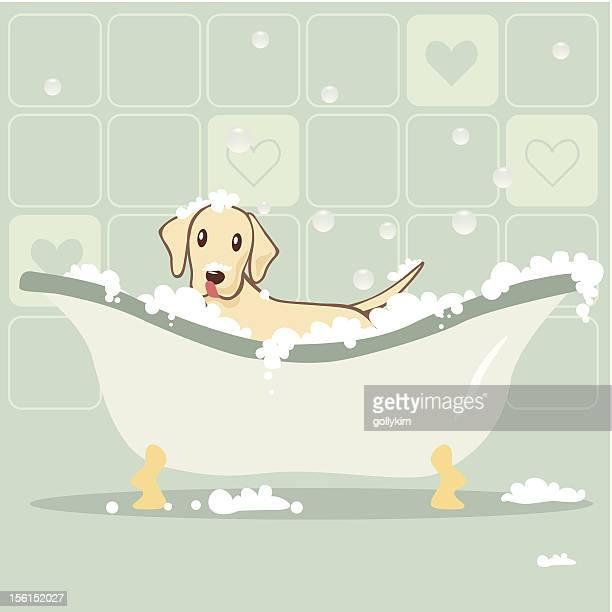 ilustraciones, imágenes clip art, dibujos animados e iconos de stock de perro tomando baño de burbujas - bañera con patas