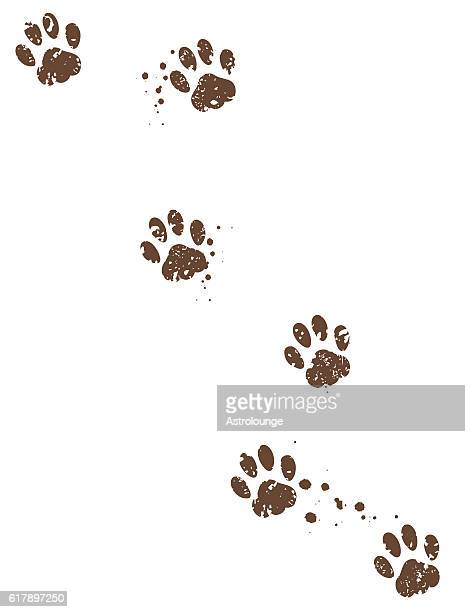 dog tracks - dog stock illustrations