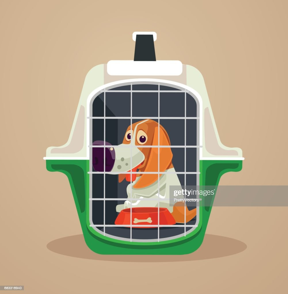 Dog transport box. Carrying case