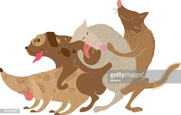 dog - sex and reproduction stock illustrations, clip art, cartoons, & icons
