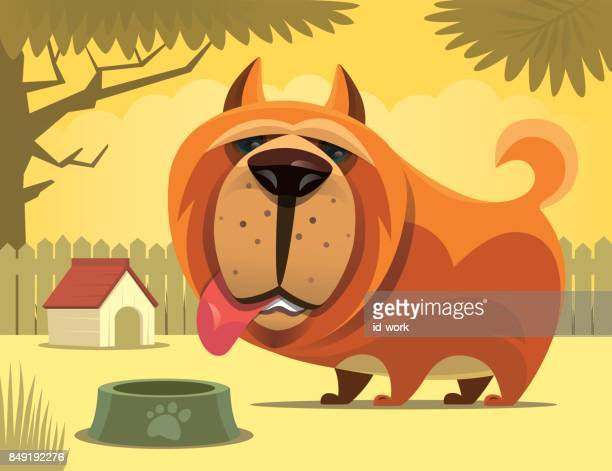 dog waiting for food - dog eating stock illustrations, clip art, cartoons, & icons