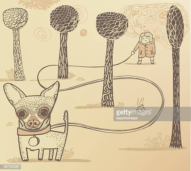 dog walker in the park - feces stock illustrations, clip art, cartoons, & icons