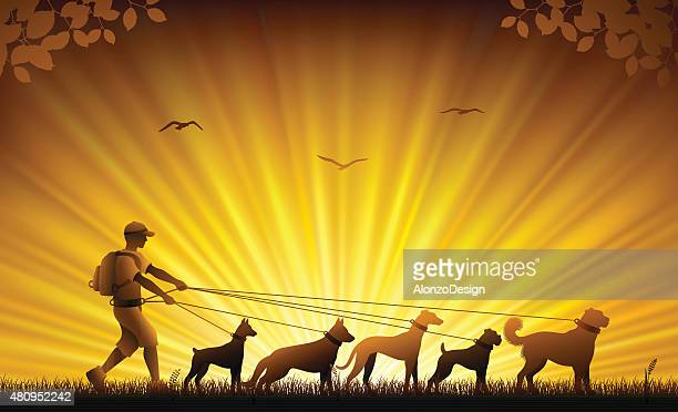 ilustraciones, imágenes clip art, dibujos animados e iconos de stock de paseador de perros - galgo