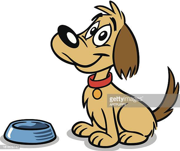 dog with dish - dog bowl stock illustrations, clip art, cartoons, & icons