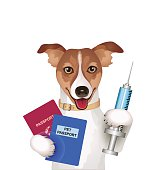 Dog with passport, vaccination certificate and syringe