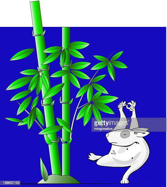 ilustraciones, imágenes clip art, dibujos animados e iconos de stock de dog_yoga_bamboo - educacion fisica