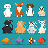 dogs cats and fish pets characters