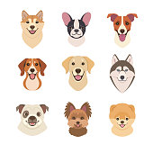 Dogs faces collection.