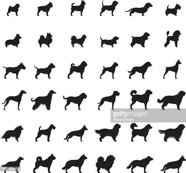 dogs icon set - dog stock illustrations