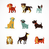 Dogs icons and illustrations