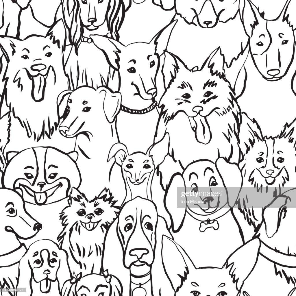 Dogs seamless vector pattern. Illustration with bulldog, bobtail, dachshund, bullterrier, Doberman, Chihuahua