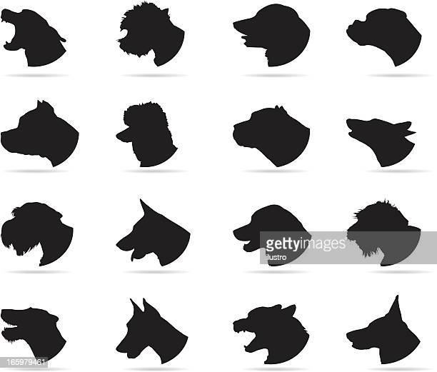 dogs - agression stock illustrations, clip art, cartoons, & icons
