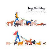 Dogs walkers, french bulldog, toy terrier, spitz, corgi, basset hound, dachshund, rhodesian ridgeback, weimaraner, retriever, spaniel, komondor, doberman, poodle, mittelschnauzer.