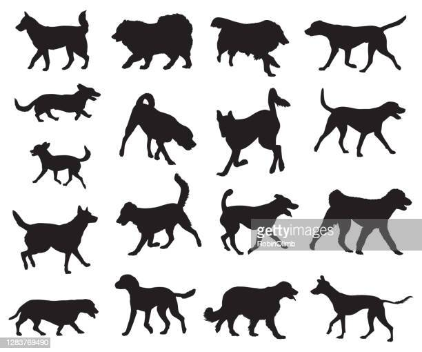 dogs walking and running silhouettes - husky dog stock illustrations