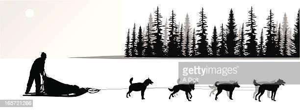 Illustrations et dessins anim s de chien de tra neau - Coloriage chien de traineau ...