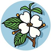dogwood flower icon