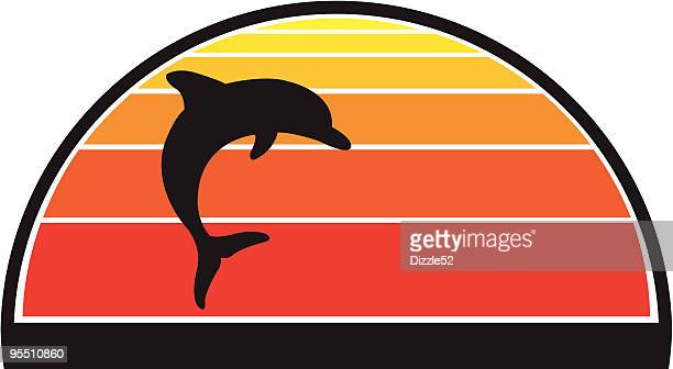 Dolphin against a sunset