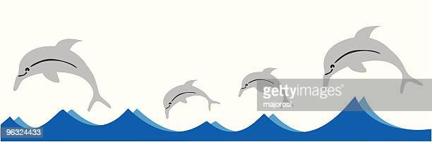 dolphin family swimming in the ocean