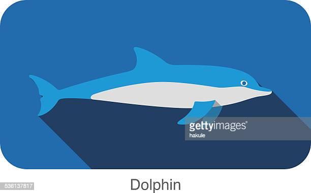 ilustrações, clipart, desenhos animados e ícones de golfinhos nadando no mar plana ícone do design - termo anatômico